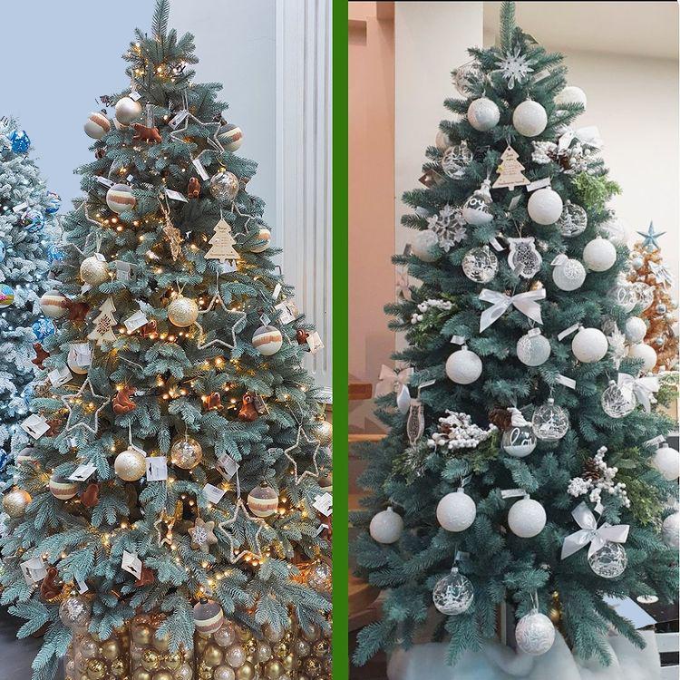 две елки
